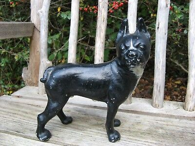 Boston Terrier! Shabby~chippy~vintage~antique cast aluminum LARGE DOG figurine!
