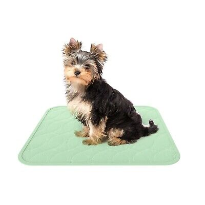 2 Pack Puppy Dog Pee Training Pads Reusable Washable Quick Absorb Small 17 x 20