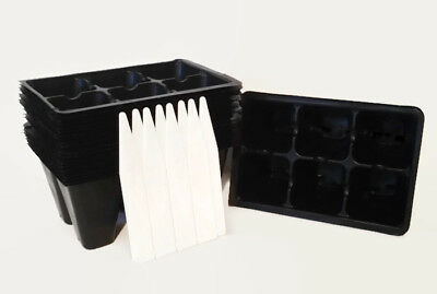 Seed Starting Tray Insert, 144 Cells, 24 Six Packs, 2 Flats, Plus 8 Plant Labels