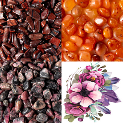 Tumbled Stone Collection 1.0lb Lots Rhodalite Carnelian Red Tigers Eye