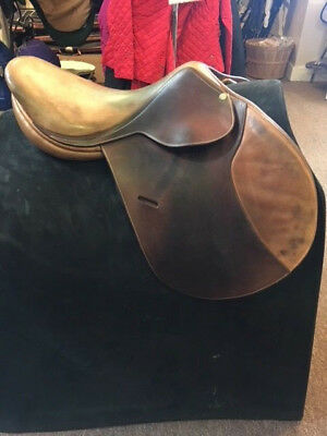 USED BEVAL Butet Close Contact Saddle-17-2 - Med  Tree