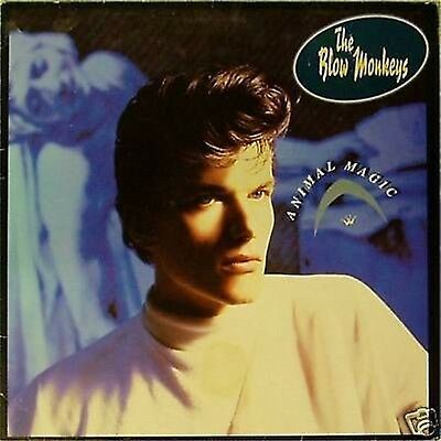 The Blow Monkeys 'Animal Magic' Uk Lp