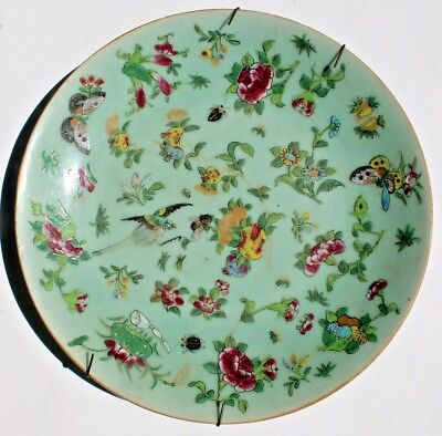 Antique Chinese Celadon Famille Rose Verte Plate Birds Flower Butterfly 9+""