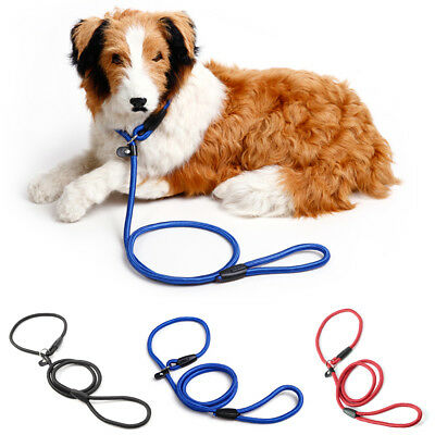 Collier laisse adjustable dog training nylon rope pour chien animalerie