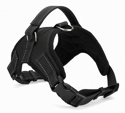 Dog Harness-Kelpie/Border Collie/Staffy- Adjustable w Handle, Free Shipping MED