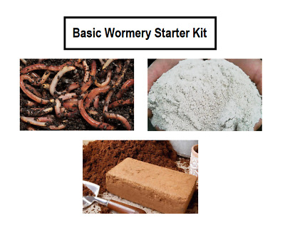 Basic WORM COMPOSTING STARTER KIT, Compost Bin, Food Composter, Worms, NEW