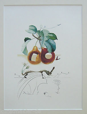 DALI Salvador FRUITS 349: Früchte mit Löchern / Fruits troués