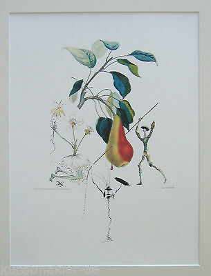 DALI Salvador FRUITS 351: Birne Don Quichotte / Poire Don Quichotte