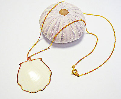 White Scallop Shell with Gold Plated Necklace Seashell Jewelry Mermaid Nautical