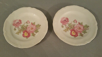 Vintage Set of 2 Semi-Vitreous Edwin M Knowles China Co. Floral Bread Plates