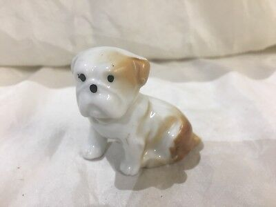 Darling Antique Porcelain White Brown Dog Collectible Japan