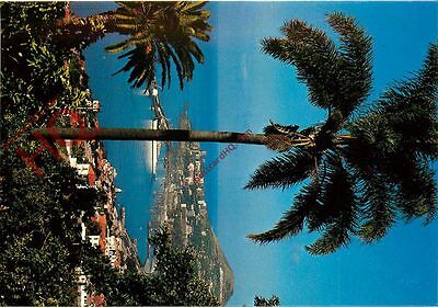 Picture Postcard--Funchal (Madeira) - Western View