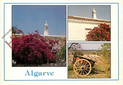 Picture Postcard:-Algarve (Multiview)