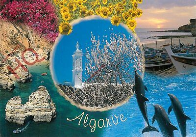 Picture Postcard; Algarve (Multiview) Showing Dolphins