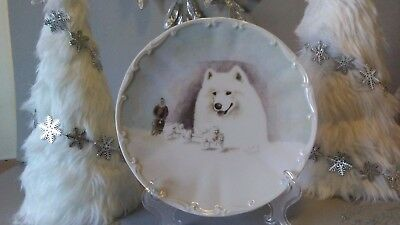 Samoyed Plate Limited Edition Sled Dogs German
