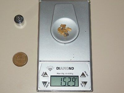 Natural Alaskan placer gold 1.529 Grams M5