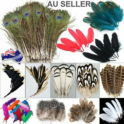 Mix Hen Pheasant Peacock Tail Eye Goose Feathers Wedding Millinery DIY Craft Par
