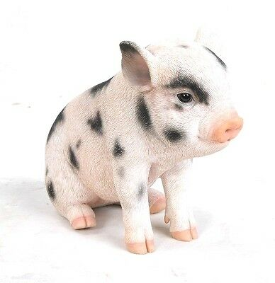 Sitting Baby PIG with Black Spots Life Like Figurine Statue Home Garden NEW