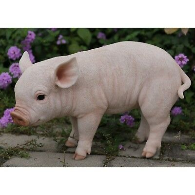 """Standing Baby Pig Piglet 14""""  Statue Realistic Life Like Home Garden Decor"""