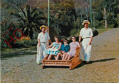 Picture Postcard, Madeira, Carro Do Monte, Toboggan Sledge