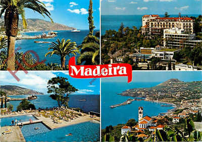 Picture Postcard--Madeira (Multiview)