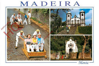 Picture Postcard, Madeira, Monte, With The Toboggan