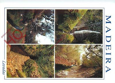 Picture Postcard:-Madeira, Levadas, Water Channels (Multiview)