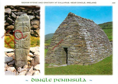 Picture Postcard--Dingle Peninsula, Ogham Stone And Oratory At Gallarus