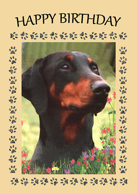 Doberman Head Study Dog Great  Birthday Greetings Note Card
