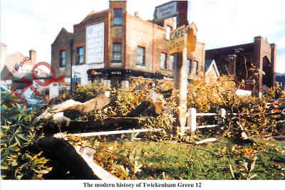 Picture Postcard: Twickenham Green, The Morning After The Great Storm 1987