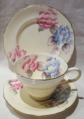 Vintage Paragon Bone China Hortensia Pattern Trio c1939-49 Made In England