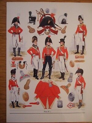 Military Print-1802 Infantry Of The Line-Officers  By Bk Fosten