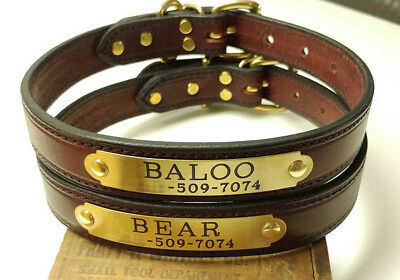 Leather Dog Collar with Custom Engraved Solid Brass or Nickel Silver Plate