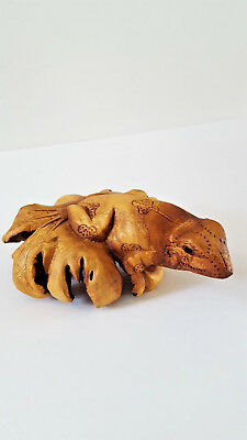 Wood Carved Frog on Burl Wood