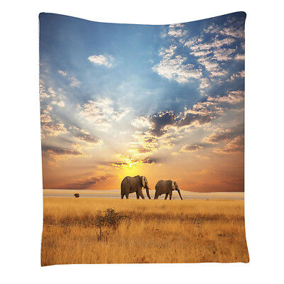 Tow Elephants African Distinct Species Sun Rays Untouched Land Fall Scene P U0G0