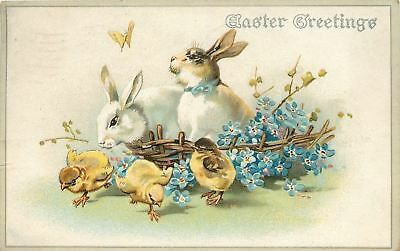 Easter~White Brown Rabbits~Flowers~Watch Butterfly~Chicks Run Away~EMB~Germany