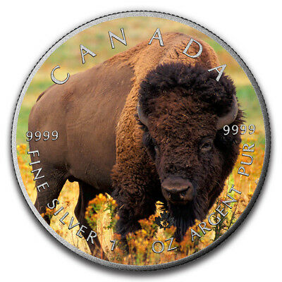 BISON - CANADIAN WILDLIFE SERIES - 2016 1 oz Pure Silver Coin - Color & Antique
