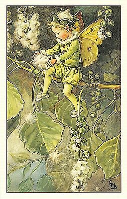 Flower Faires Postcard Cicley Mary Barker The Poplar Fairy Lot1