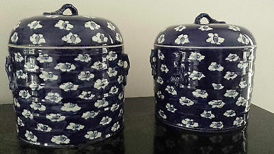 Elegant A Pair  Chinese Blue & White Porcelain Jar