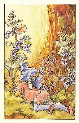 Flower Faires Postcard Cicley Mary Barker The Ground Ivy Fairy Lot1
