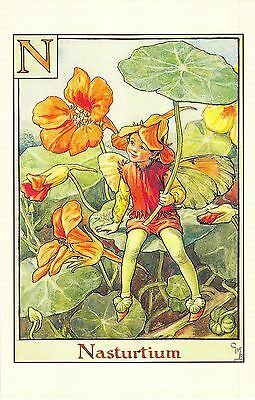 Flower Faires Postcard Cicley Mary Barker The Nasturtium Fairy Lot1