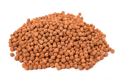 Natural Rudraksha loose beads 8 mm best quality wholesale price
