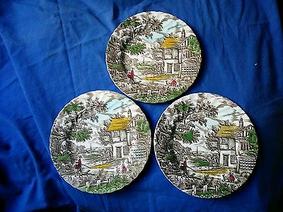Myott The Hunter Multi-Colored Dinner Plates - Made In England