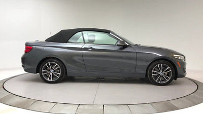 2018 BMW 2 Series 230i xDrive 230i xDrive 2 Series New 2 dr Convertible Automatic Gasoline 2.0L 4 Cyl Mineral