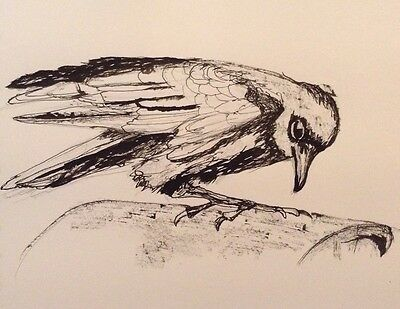 Crow Original Ink Drawing signed