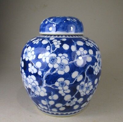 ATTRACTIVE 19thc CHINESE PRUNUS JAR with COVER kangxi mark
