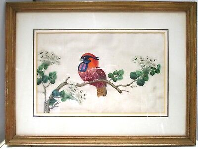 SUPER QUALITY ANTIQUE Chinese PAINTING of a BIRD on rice or pith paper