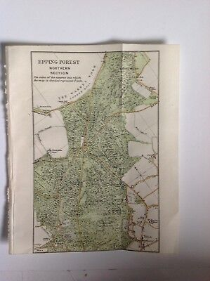 Epping Forest, Northern Section, 1920 Vintage Map,  Original