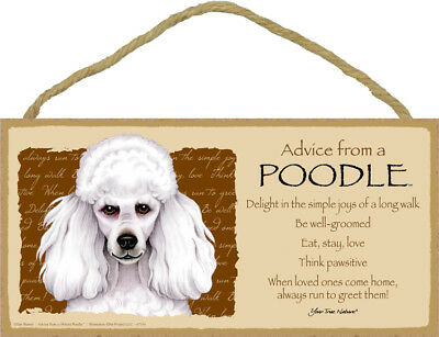 """Advice from a Poodle Sign Plaque Dog 10"""" x 5"""" gift white"""