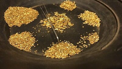 2 Lb NUGGET RESERVE ™ Gold Paydirt! Guaranteed unsearched + added Gold & Nugget